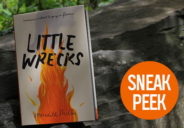 Read The First 3 Chapters Of Little Wrecks