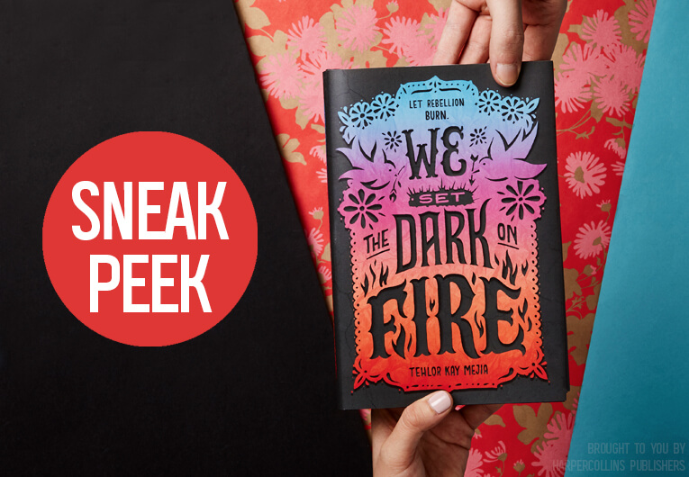 We Set the Dark on Fire: Banner