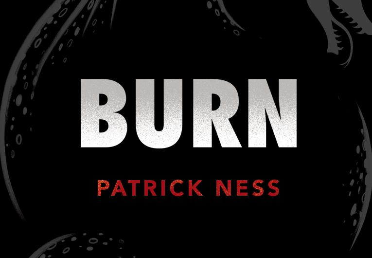 Cover Reveal: Burn